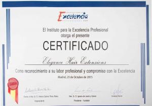 Certificado premio excelencia