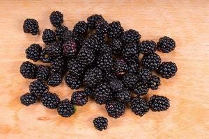 Pile of freshly picked ripe blackberries